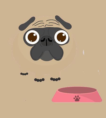 dog garlic