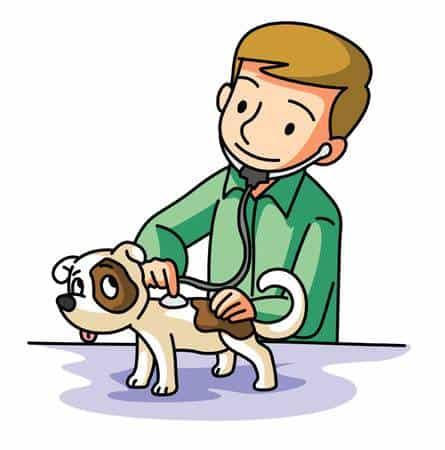 http://www.petcare.com.au/wp-content/uploads/2018/10/Vet-cartoon.jpg