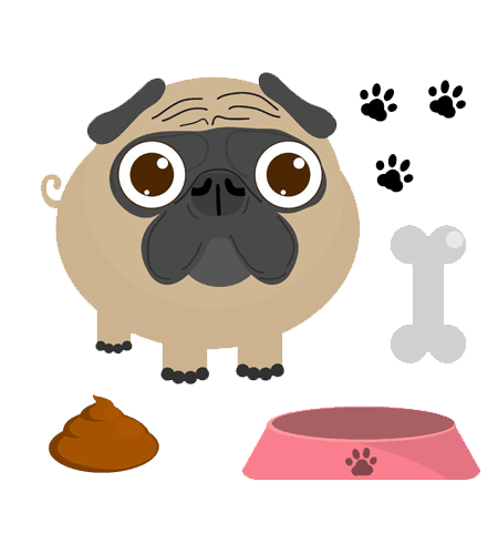 Your Dog's Poop Normal? What to look for (besides Colour ) | PetCare