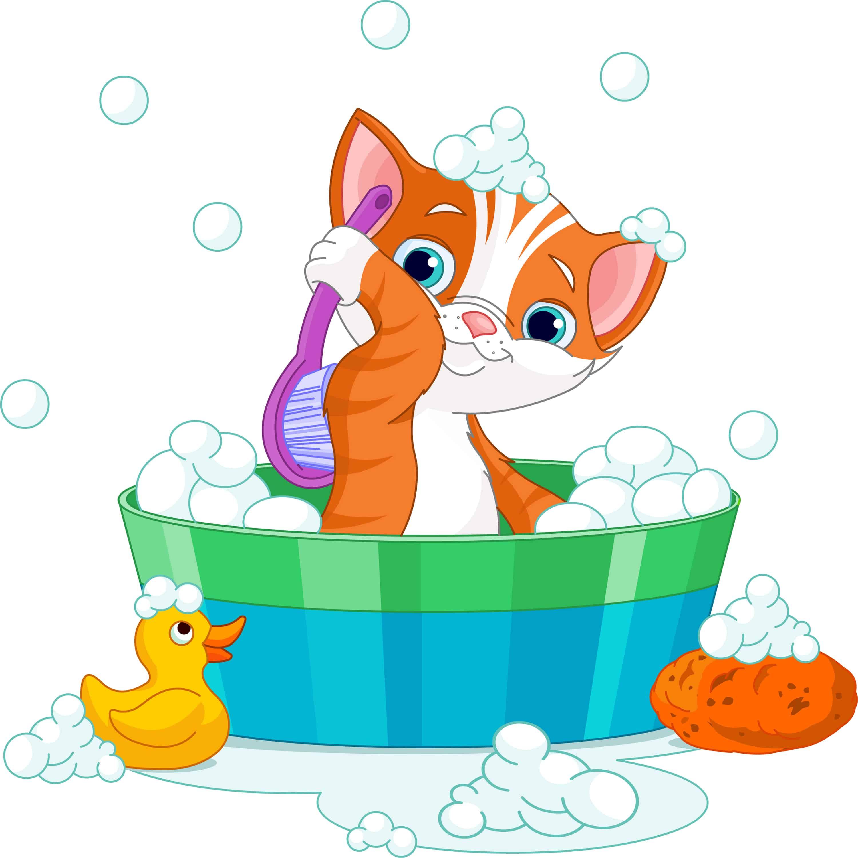 cat having a soapy bath