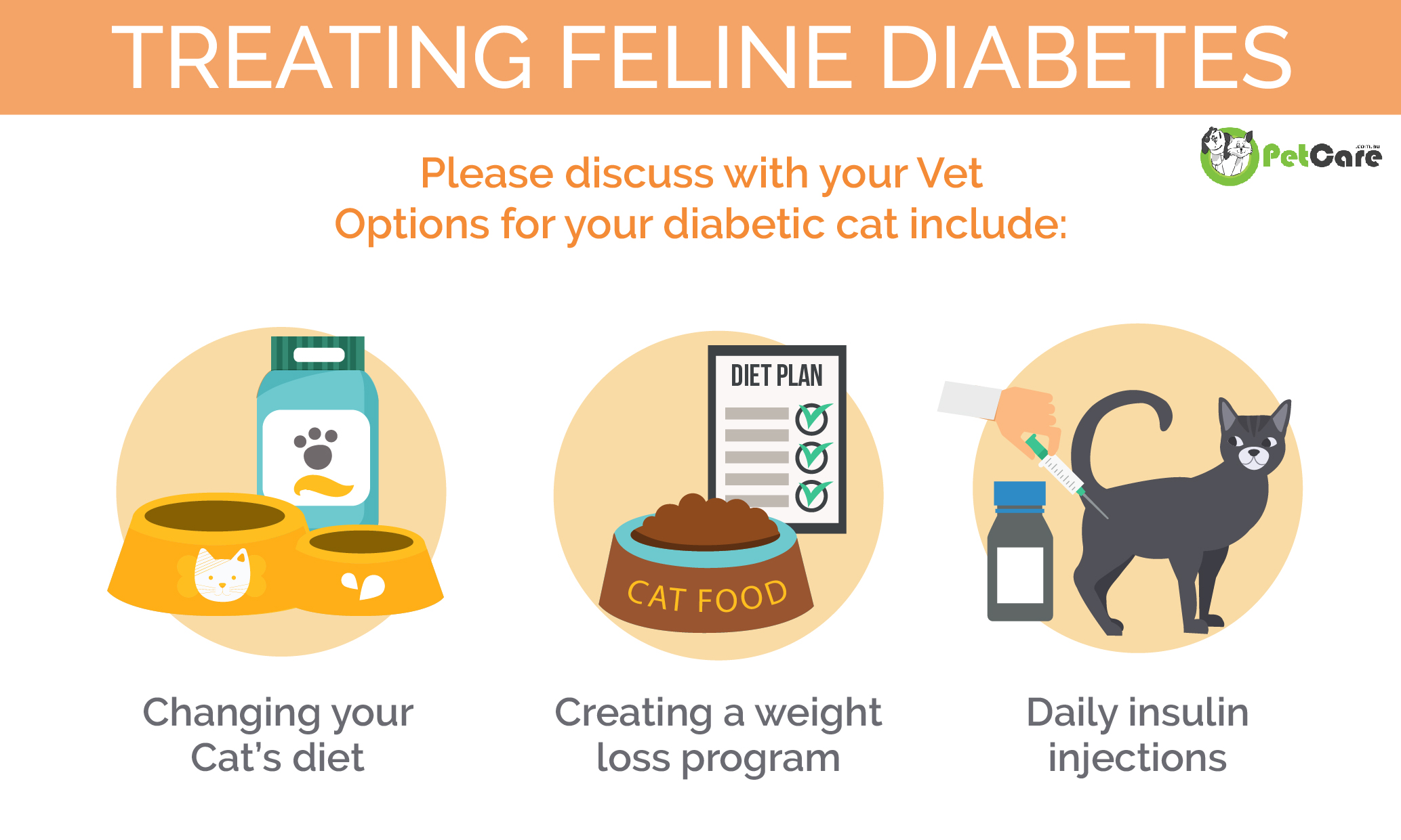 Treating Diabetes in cats Infographic