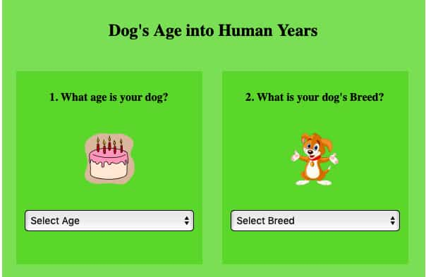 dog age calculator - convert to human years