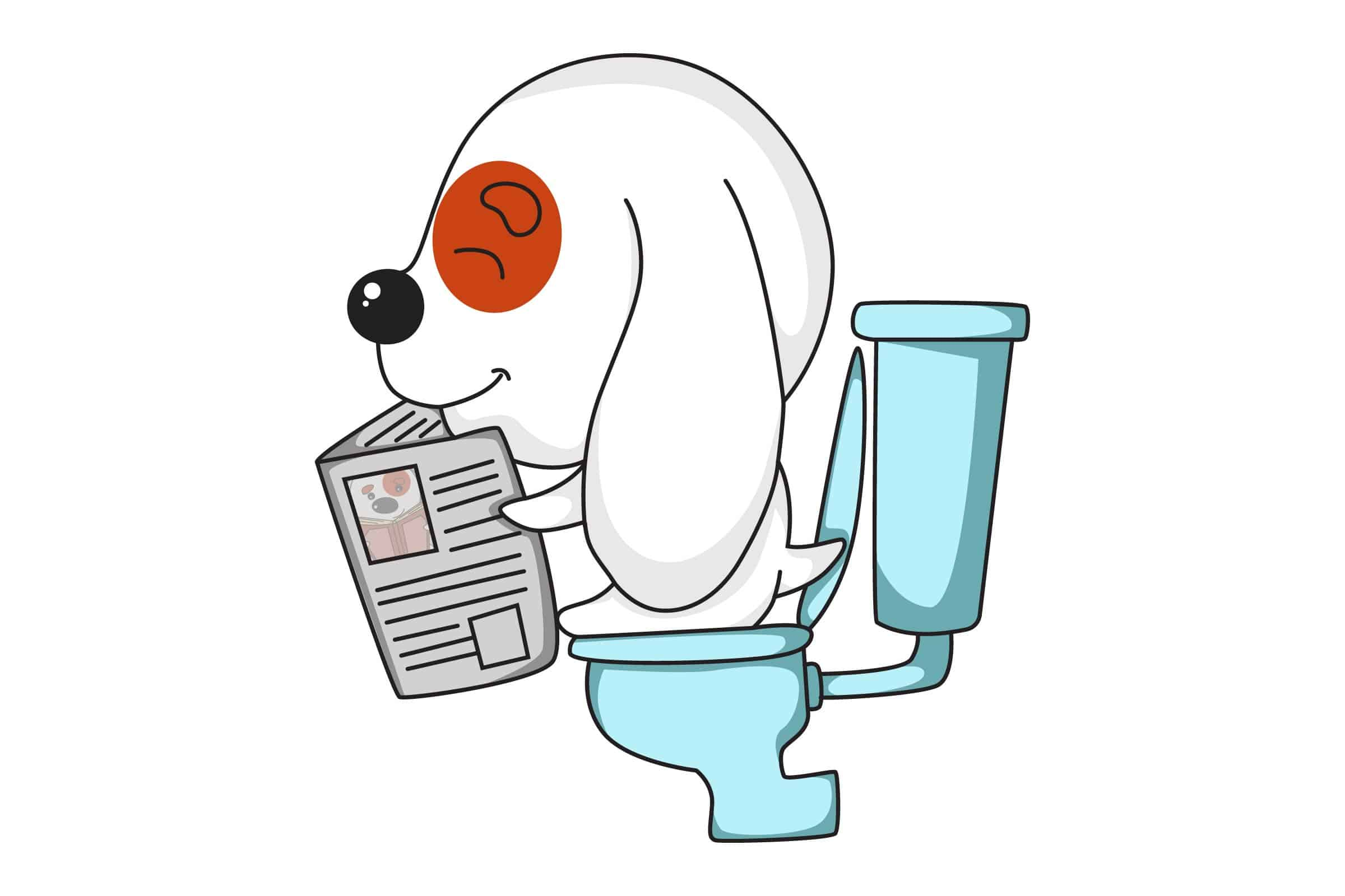 puppy on toilet sitting