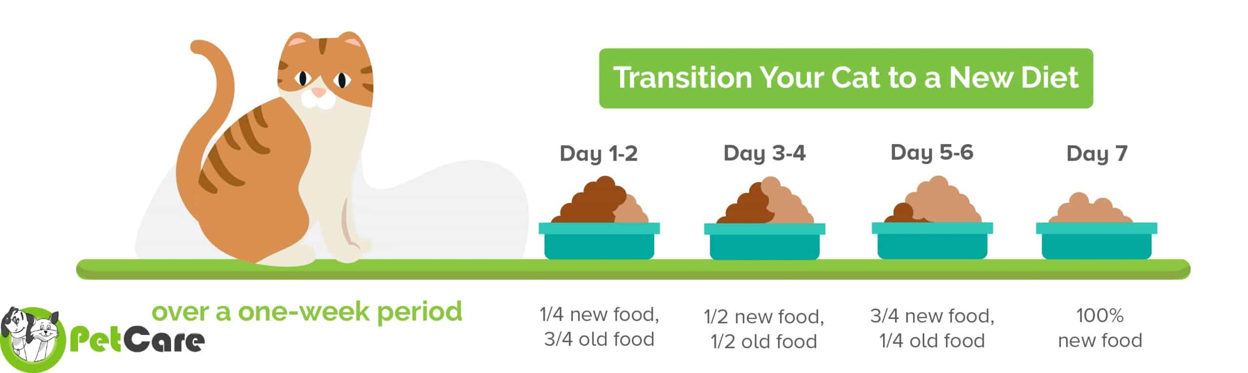 how to change cat diet