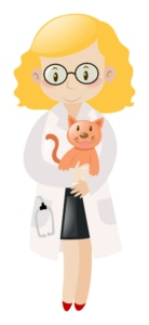 cat and a vet vector