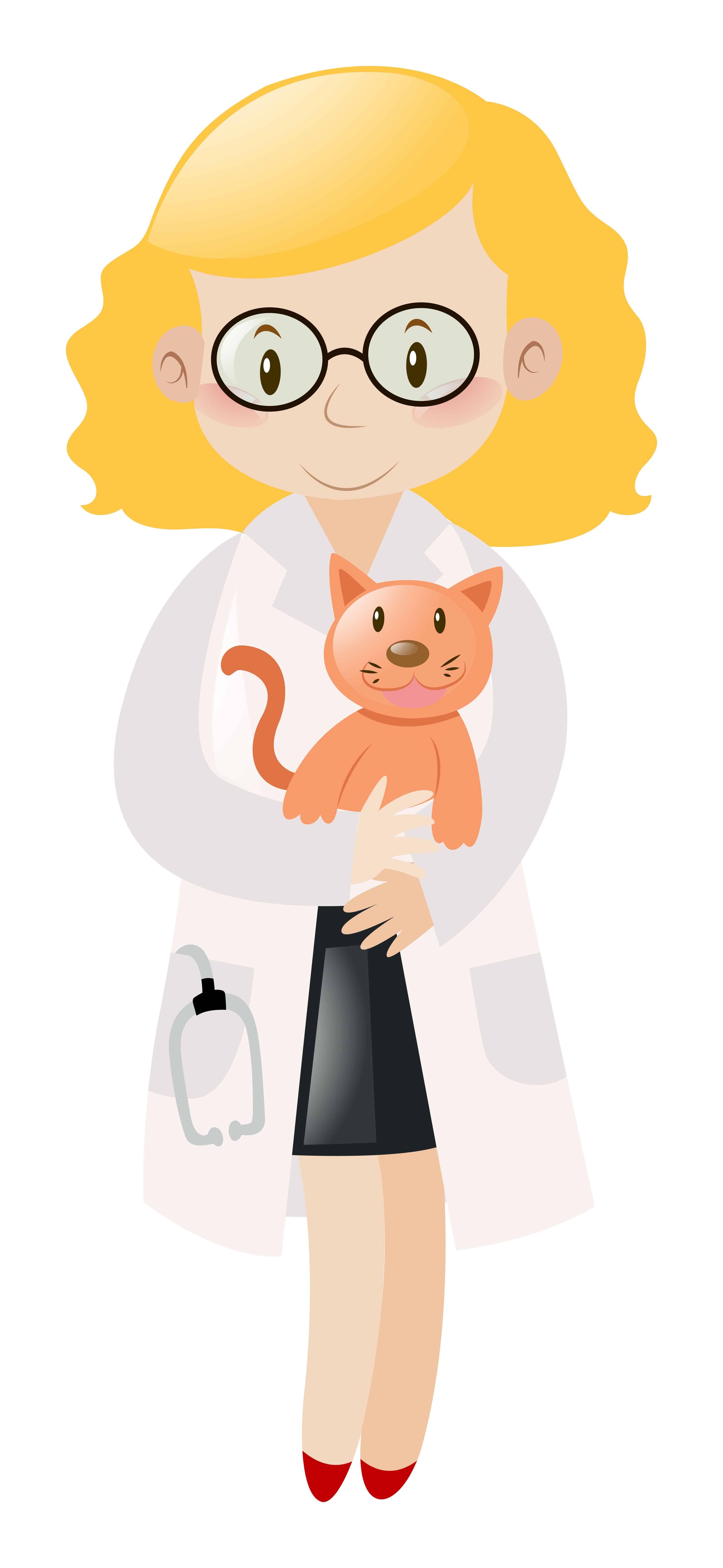 cat and a vet vector