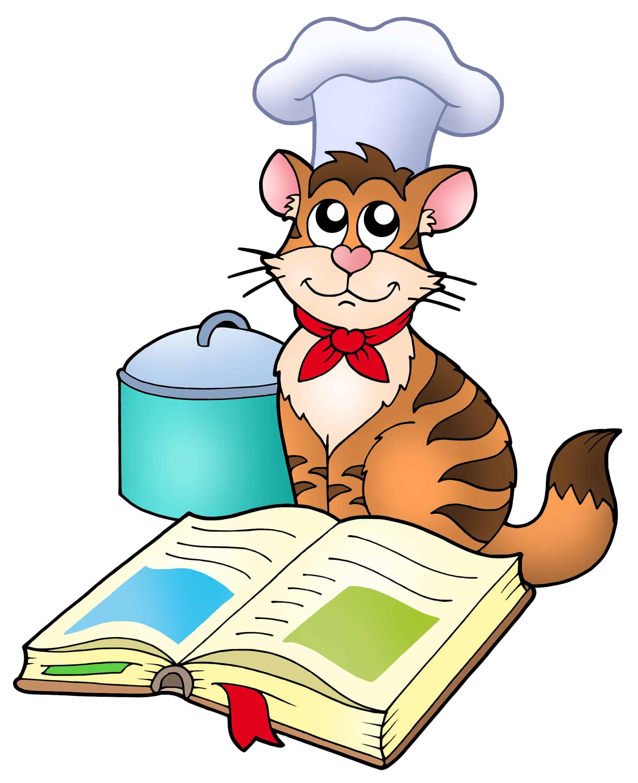 chef cat funny