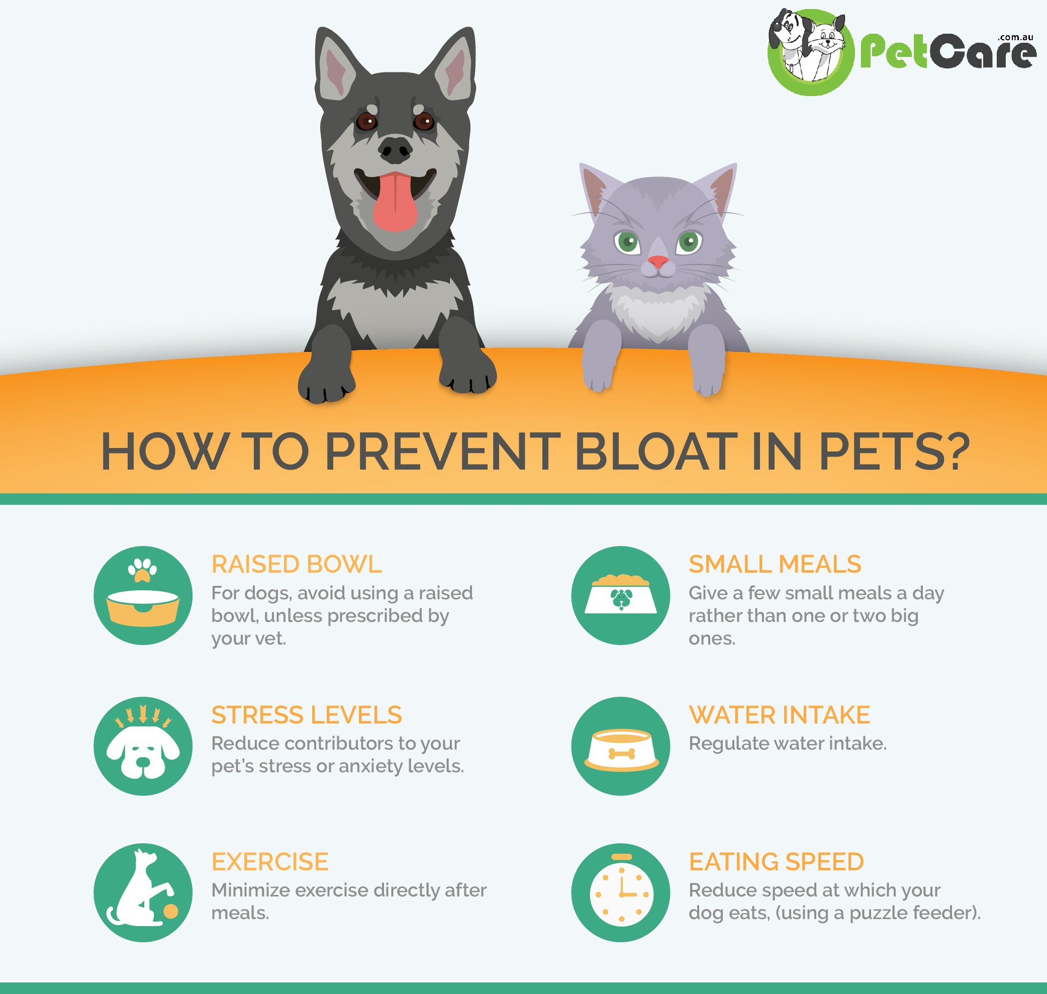 Prevent bloat tips infographic